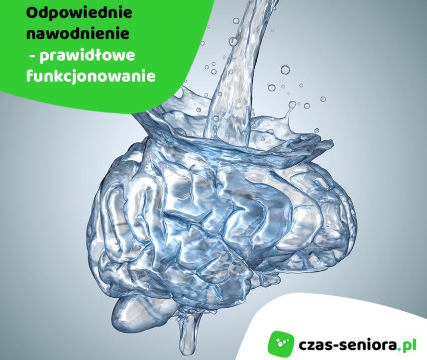 picie wody, mózg potrzebuje wody, zawartość wody w mózgu, mózg potrzebuje wody, woda w mózgu, nawodniony mózg